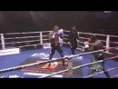 Melvin Manhoef vs. Tyrone Spong